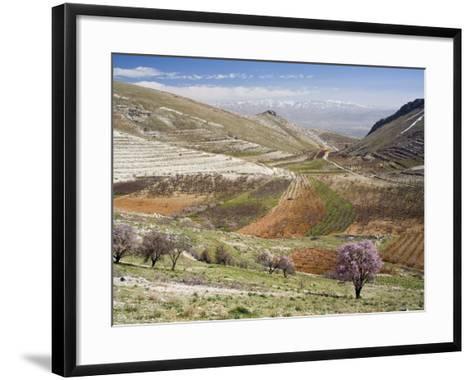 Niha, Bekaa Valley, Lebanon-Ivan Vdovin-Framed Art Print
