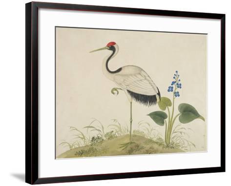 Red-Crowned Crane, c.1800-1840--Framed Art Print