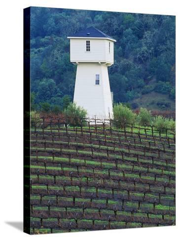 Silver Oak Cellars, Alexander Valley Wine Country, California-John Alves-Stretched Canvas Print