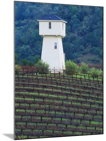 Silver Oak Cellars, Alexander Valley Wine Country, California-John Alves-Mounted Photographic Print