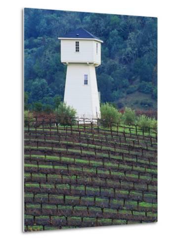 Silver Oak Cellars, Alexander Valley Wine Country, California-John Alves-Metal Print