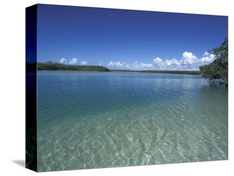 Lovers Key SRA, Ft. Myers Beach, Florida-Maresa Pryor-Stretched Canvas Print