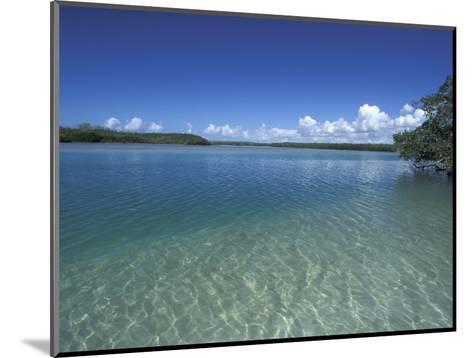 Lovers Key SRA, Ft. Myers Beach, Florida-Maresa Pryor-Mounted Photographic Print