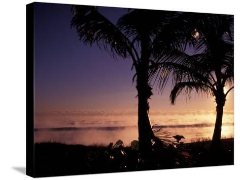 Boynton Beach Winter Ocean, Florida-Nik Wheeler-Stretched Canvas Print