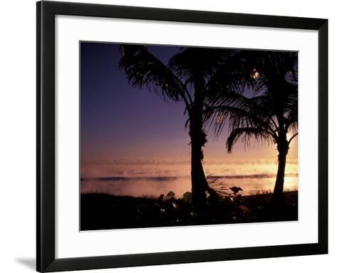 Boynton Beach Winter Ocean, Florida-Nik Wheeler-Framed Art Print