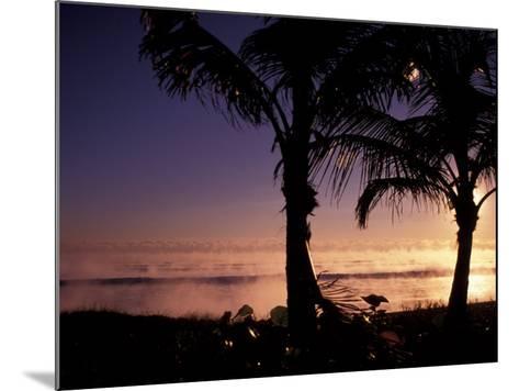 Boynton Beach Winter Ocean, Florida-Nik Wheeler-Mounted Photographic Print