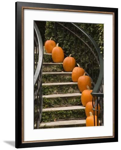Fall Decorations, Savannah, Georgia-Joanne Wells-Framed Art Print