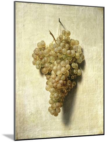 Raisons Blancswhite Grapes-Louis Leopold Boilly-Mounted Giclee Print