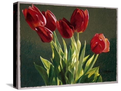 Red Tulips-Helen J^ Vaughn-Stretched Canvas Print