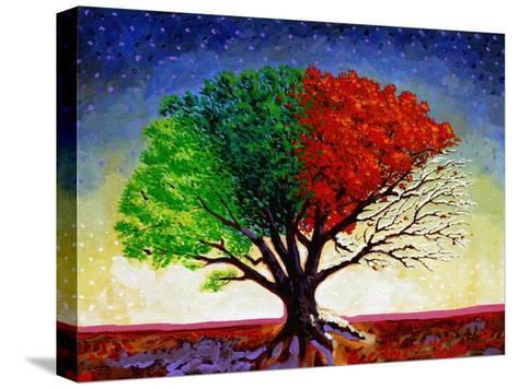 Tree For All Seasons-John Newcomb-Stretched Canvas Print