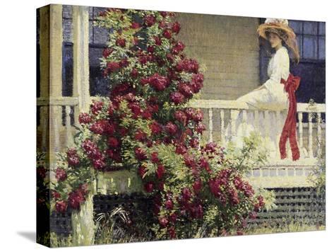 The Crimson Rambler-Philip Leslie Hale-Stretched Canvas Print