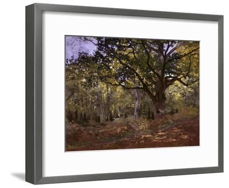 Bodmer Oak, Fontainbleau Forest-Claude Monet-Framed Art Print
