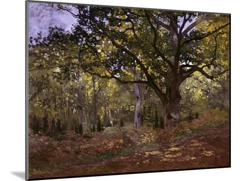 Bodmer Oak, Fontainbleau Forest-Claude Monet-Mounted Giclee Print