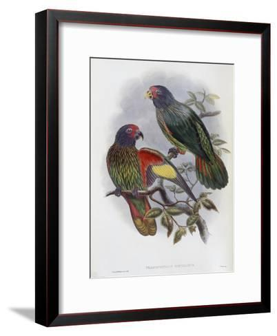 Red Fronted Lory-John Gould-Framed Art Print