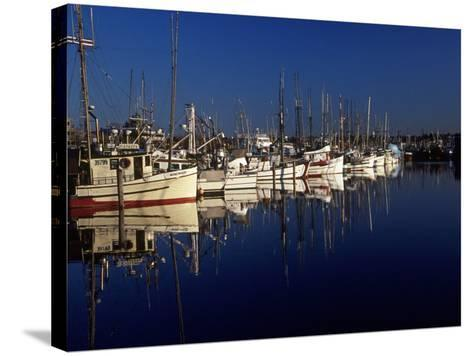 Fishing Boats in Port, Ballard, WA-Christopher Jacobson-Stretched Canvas Print