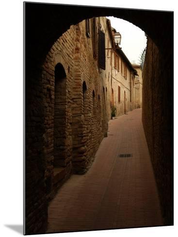 San Gimignano, Tuscany, Italy-Keith Levit-Mounted Photographic Print