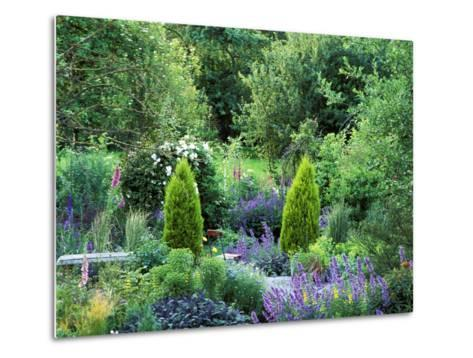 View into Country Garden with Perennials and Small Trees Summer-Lynn Keddie-Metal Print
