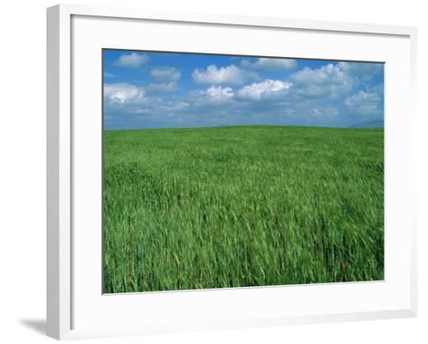 Wheat Fields Near Antequera, Spain-Gary Conner-Framed Art Print