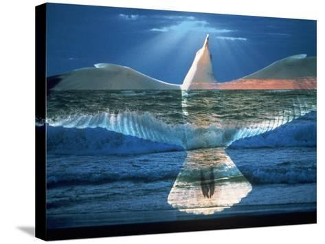 Bird Superimposed Over Ocean-Whitney & Irma Sevin-Stretched Canvas Print