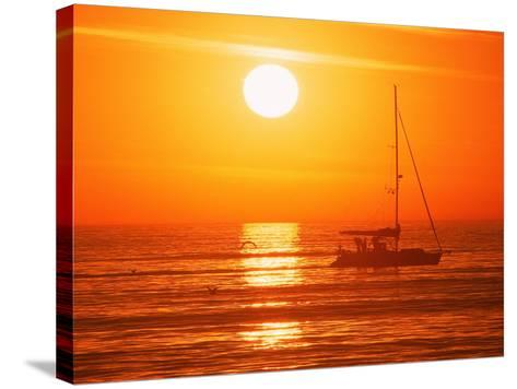 Boats in Harbor, Playa Del Rey, CA-Harvey Schwartz-Stretched Canvas Print