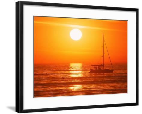 Boats in Harbor, Playa Del Rey, CA-Harvey Schwartz-Framed Art Print