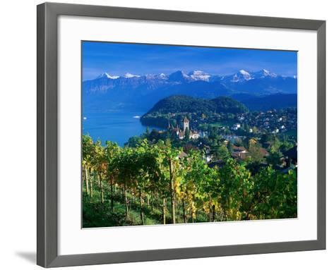 Castle and Vines, Spiez, Switzerland-Peter Adams-Framed Art Print