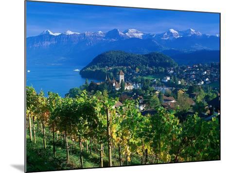 Castle and Vines, Spiez, Switzerland-Peter Adams-Mounted Photographic Print