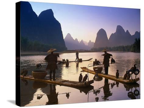 Cormorant, Fisherman, China-Peter Adams-Stretched Canvas Print