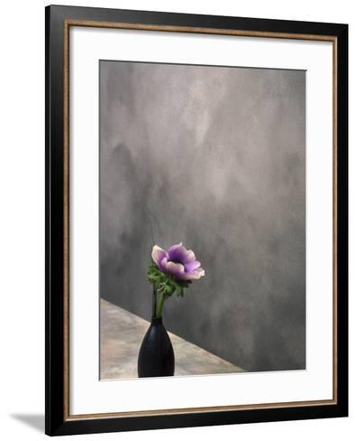 Pink Anemone in Vase-David Wasserman-Framed Art Print