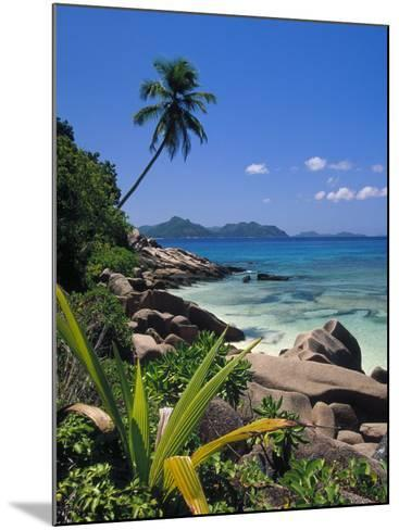 Tropical Beach, La Digue Island, Seychelles-Angelo Cavalli-Mounted Photographic Print