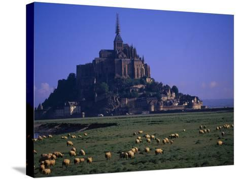 Morning with Flock of Sheep, Normandy-Walter Bibikow-Stretched Canvas Print