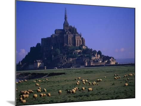 Morning with Flock of Sheep, Normandy-Walter Bibikow-Mounted Photographic Print
