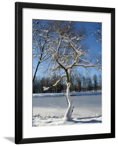 Winter Scenic, Michigan-Dennis Macdonald-Framed Art Print