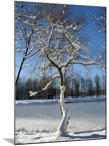 Winter Scenic, Michigan-Dennis Macdonald-Mounted Photographic Print