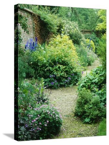 Walled Garden, Winding Path Through Herbaceous Border-Lynn Keddie-Stretched Canvas Print