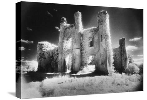 Moydrum Castle, County Westmeath, Ireland-Simon Marsden-Stretched Canvas Print