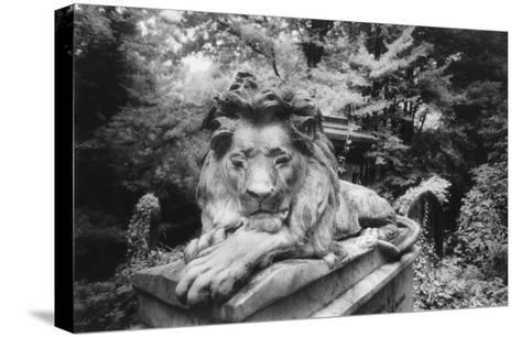 Lion Monument to Richard Charles Bostock, Abney Park Cemetery, London, England-Simon Marsden-Stretched Canvas Print