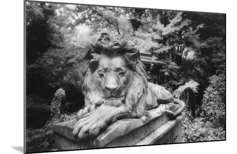 Lion Monument to Richard Charles Bostock, Abney Park Cemetery, London, England-Simon Marsden-Mounted Giclee Print