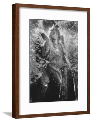 Angel on Tomb, Ardoginna House, County Waterford, Ireland-Simon Marsden-Framed Art Print