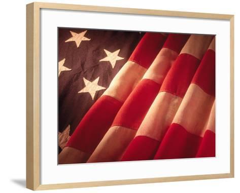American Flag-Ellen Kamp-Framed Art Print