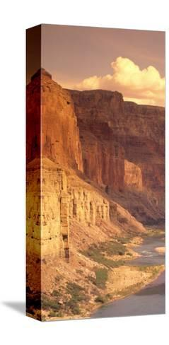 Grand Canyon National Park, CO River, AZ-Amy And Chuck Wiley/wales-Stretched Canvas Print