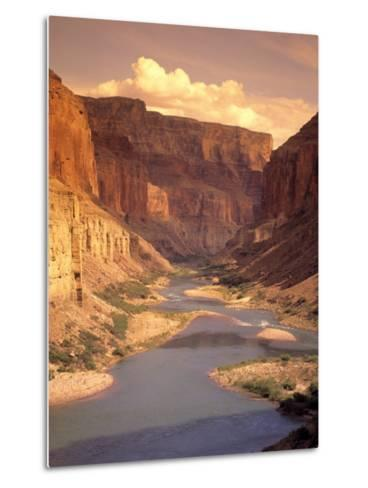 Grand Canyon National Park, CO River, AZ-Amy And Chuck Wiley/wales-Metal Print