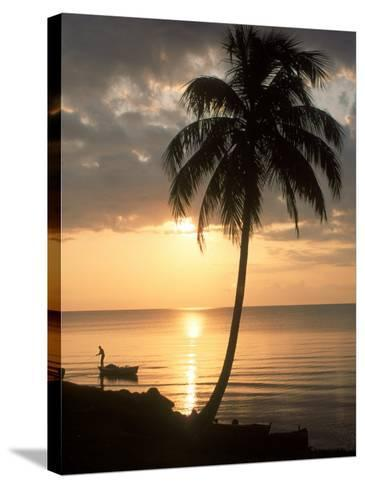 Sunrise with Man in Boat and Palm Tree, Belize-Frank Staub-Stretched Canvas Print
