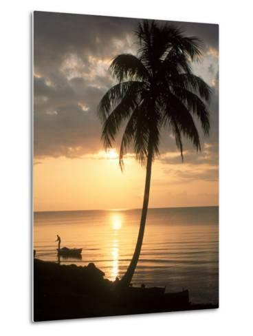 Sunrise with Man in Boat and Palm Tree, Belize-Frank Staub-Metal Print