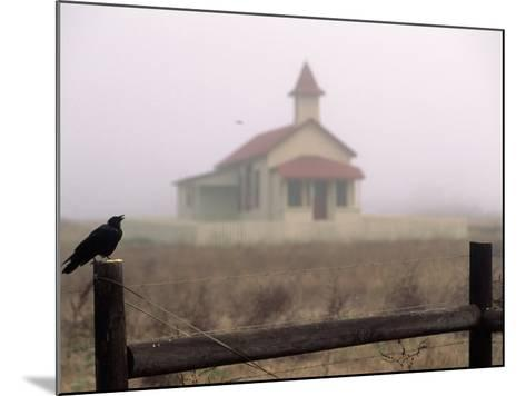 Bird on Fence in Front of Schoolhouse-Roger Holden-Mounted Photographic Print