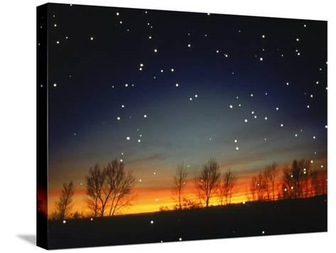 Silhouetted Landscape Below Star-Filled Sky-Chris Rogers-Stretched Canvas Print