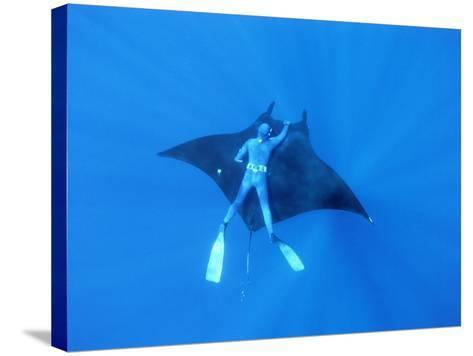 Diver Holds on to Giant Manta Ray, Mexico-Jeffrey Rotman-Stretched Canvas Print