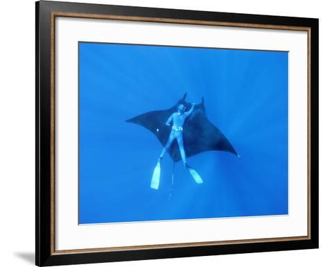 Diver Holds on to Giant Manta Ray, Mexico-Jeffrey Rotman-Framed Art Print
