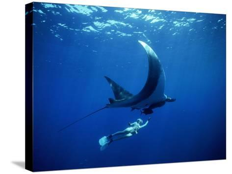 Diver Swims with Giant Manta Ray, Mexico-Jeffrey Rotman-Stretched Canvas Print