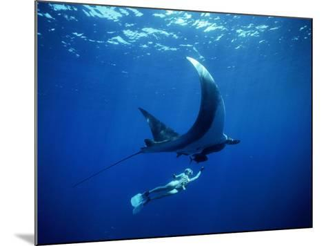 Diver Swims with Giant Manta Ray, Mexico-Jeffrey Rotman-Mounted Photographic Print